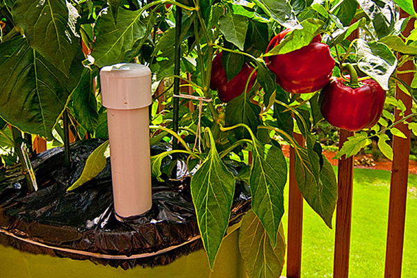 Geek Gardening by Troy Redington